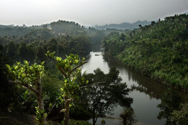 The Biosphere reserve of Mananara Nord in Madagascar
