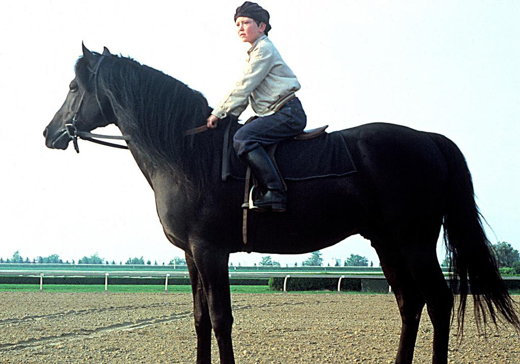 """<a href=""""http://movies.yahoo.com/movie/1800037537/info"""">The Black Stallion</a> (1979): It's scary and thrilling, amusing and inspirational -- which means it has all the ingredients for a perfect family film. And that Arabian horse creates such a striking figure, you can't help but be in awe of its majesty. The gorgeous cinematography from Caleb Deschanel certainly contributes to the mystical quality of the film, but the fundamental story is what's crucial: that of a bond between a boy and a horse, which is forged spiritually and without unnecessary dialogue. And Mickey Rooney is a hoot as the horse trainer who drives the stallion to greatness, a role that earned him an Oscar nomination for best supporting actor."""