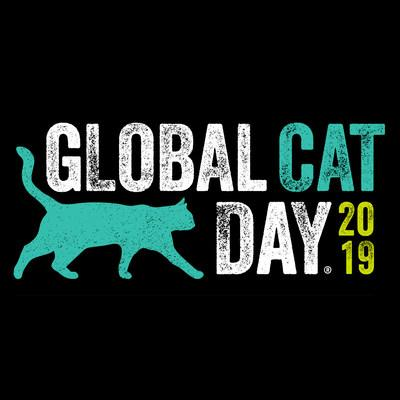 Today is Global Cat Day
