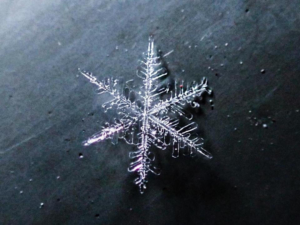 Snowflake 3: Courtesy of Kyle Brittain