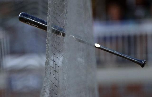 Only two of 30 MLB have yet to announce plans for extended protective netting. (AP)