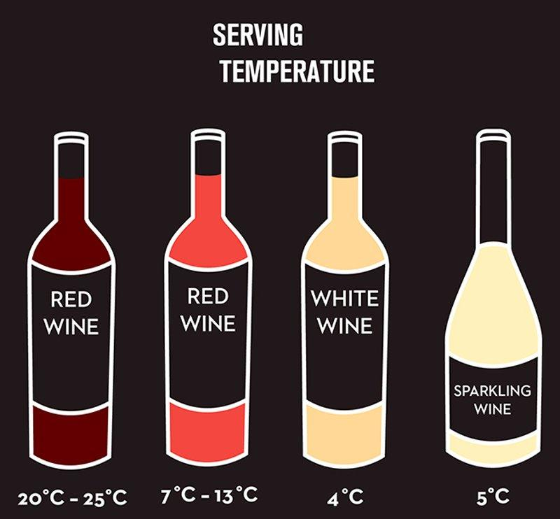 temperature beginner's guide to wine