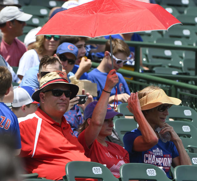 Chicago Cubs fans try to keep cool before a baseball game against the Minnesota Twins, Sunday, July 1, 2018, in Chicago. (AP Photo/Matt Marton)
