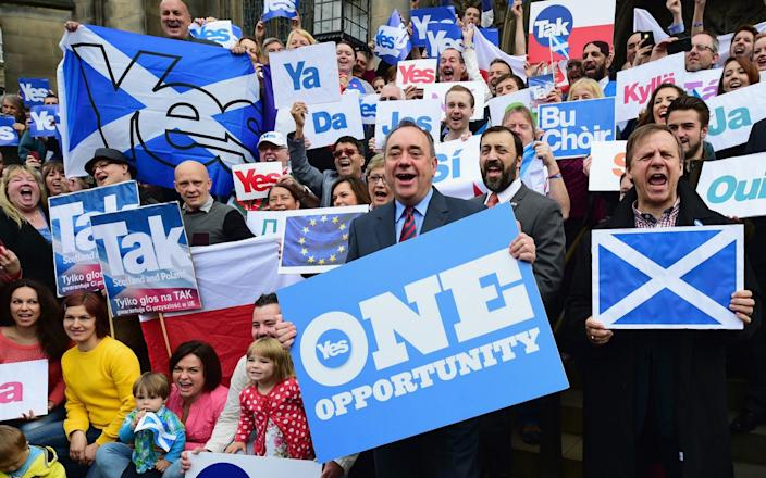 Alex Salmond during the final days of the 2014 referendum campaign - Getty Images Europe
