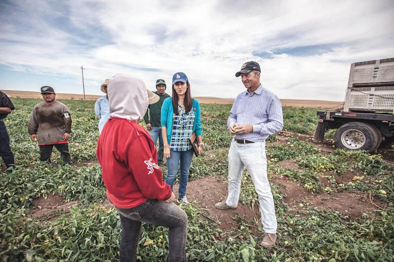 Steyer visiting a California tomato farm with labor organizers in September 2016.