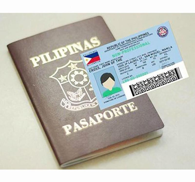 Freeze Passport, Driver's License Fees