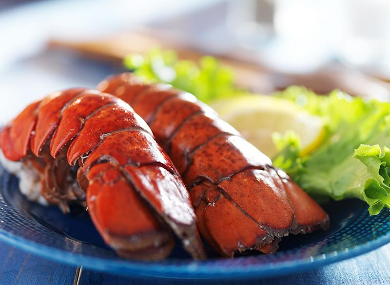 Fish ranked Northern Lobster