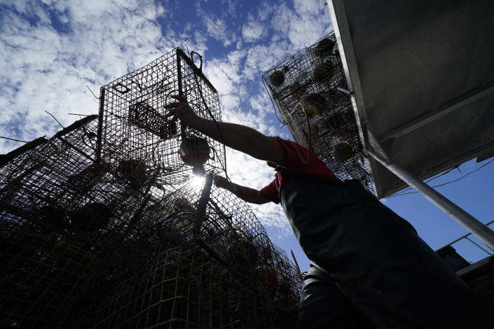 Jule Chaisson pulls his crab traps from Bayou Dularge in anticipation of Hurricane Delta, expected to arrive along the Gulf Coast later this week, in Theriot, La., Wednesday, Oct. 7, 2020. He said he's pulled around 1,000 traps over the last three days. (AP Photo/Gerald Herbert)