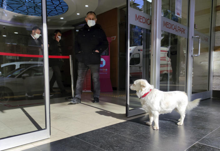 Devoted dog Boncuk looks for his owner, Cemal Senturk, at the entrance of a medical care facility in the Black Sea city of Trabzon, Turkey, Tuesday, Jan. 19, 2021. Boncuk has spent five days waiting in front of the hospital where her sick owner was receiving treatment. Senturk was discharged from the hospital later on Wednesday and returned home with Boncuk.(DHA via AP)