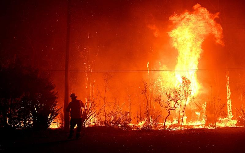 Emergency warnings were issued on Thursday for bushfires in New South Wales - REX