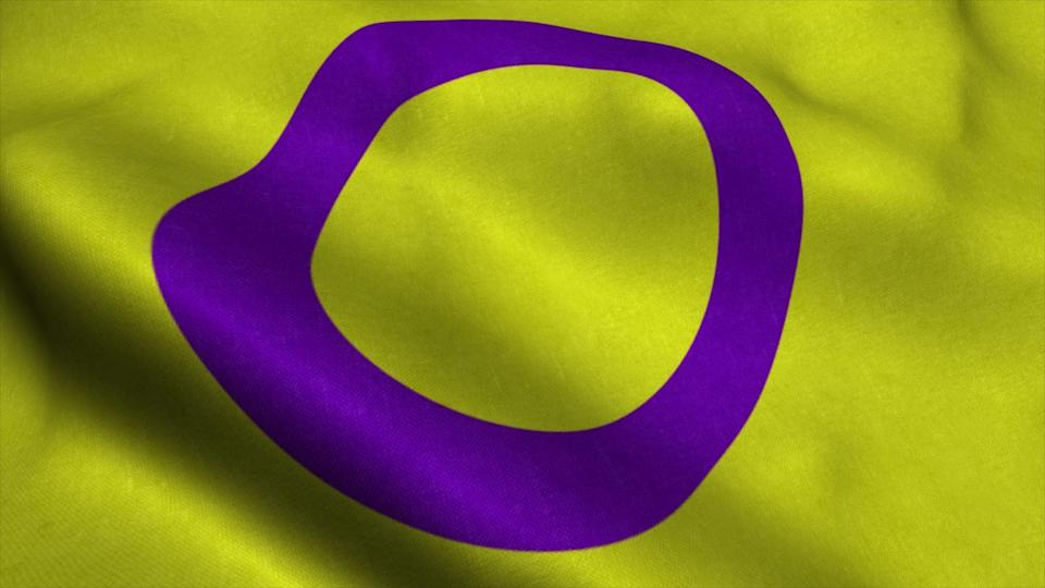 """<p>Morgan Carpenter, who ran Intersex International Australia, created this flag in 2013, per UNCO. Purple and yellow are used because they are often viewed as gender neutral. </p><p>""""The flag is comprised of a golden yellow field, with a purple circle emblem. The colors and circle don't just avoid referencing gender stereotypes, like the colors pink and blue, they seek to completely avoid use of symbols that have anything to do with gender at all. Instead, the circle is unbroken and un-ornamented, symbolizing wholeness and completeness, and our potentialities. We are still fighting for bodily autonomy and genital integrity, and this symbolizes the right to be who and how we want to be,"""" <a href=""""https://morgancarpenter.com/intersex-flag/"""" rel=""""nofollow noopener"""" target=""""_blank"""" data-ylk=""""slk:Carpenter wrote"""" class=""""link rapid-noclick-resp"""">Carpenter wrote</a>.<br></p>"""