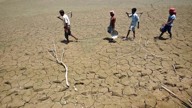Another Farmer Commits Suicide in Drought-hit Karnataka