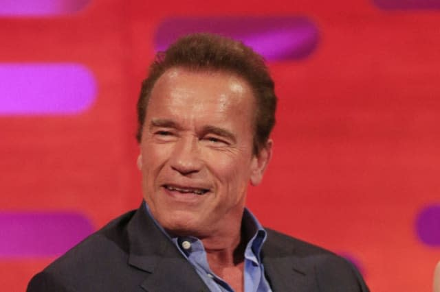 Arnold Schwarzenegger drop-kicked in the back during event in South Africa