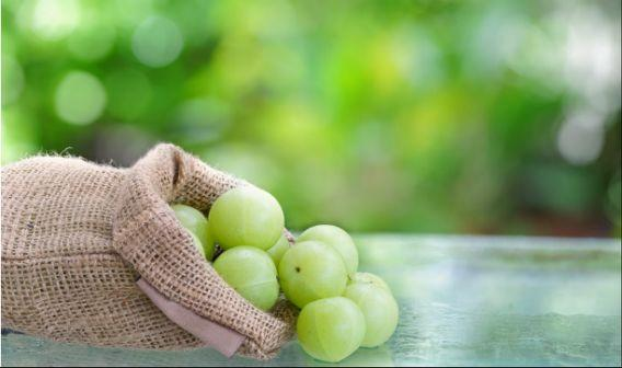 <p>Amla is officially a fruit, but it can be used to improve circulation, help with high cholesterol and smooth digestion. </p>