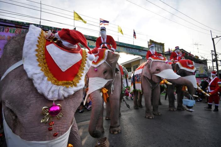 Mahouts dress elephants as Santa Claus to help distribute face masks to students, in an effort to help prevent the spread of the coronavirus disease (COVID-19), ahead of Christmas celebrations at a school in Ayutthaya