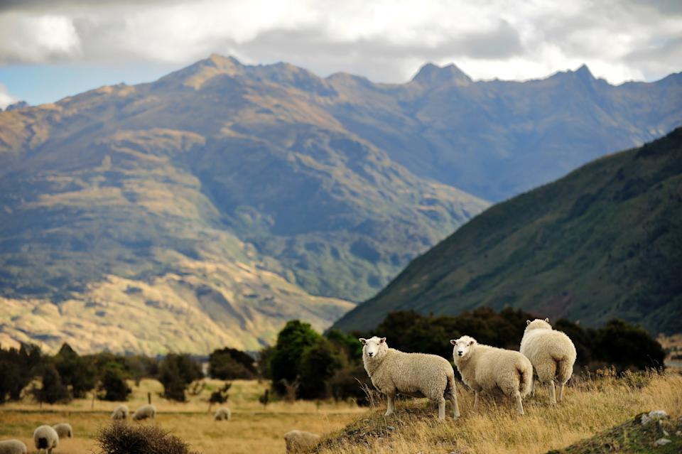 New Zealand knows a thing or two about spectacular scenery - getty