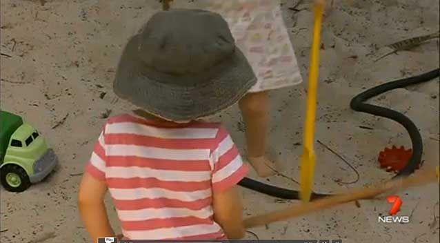A Brisbane child care worker has been charged with the attempted rape of a two-year-old boy in his care. Photo: 7 News