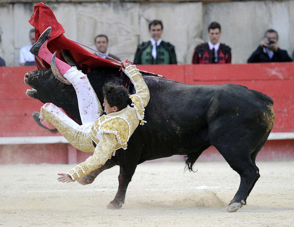 Mexican matador Diego Silveti is gored by a bull on May 20, 2013 during the Nimes Pentecost Feria in Nimes, southern France.  AFP PHOTO / PASCAL GUYOT