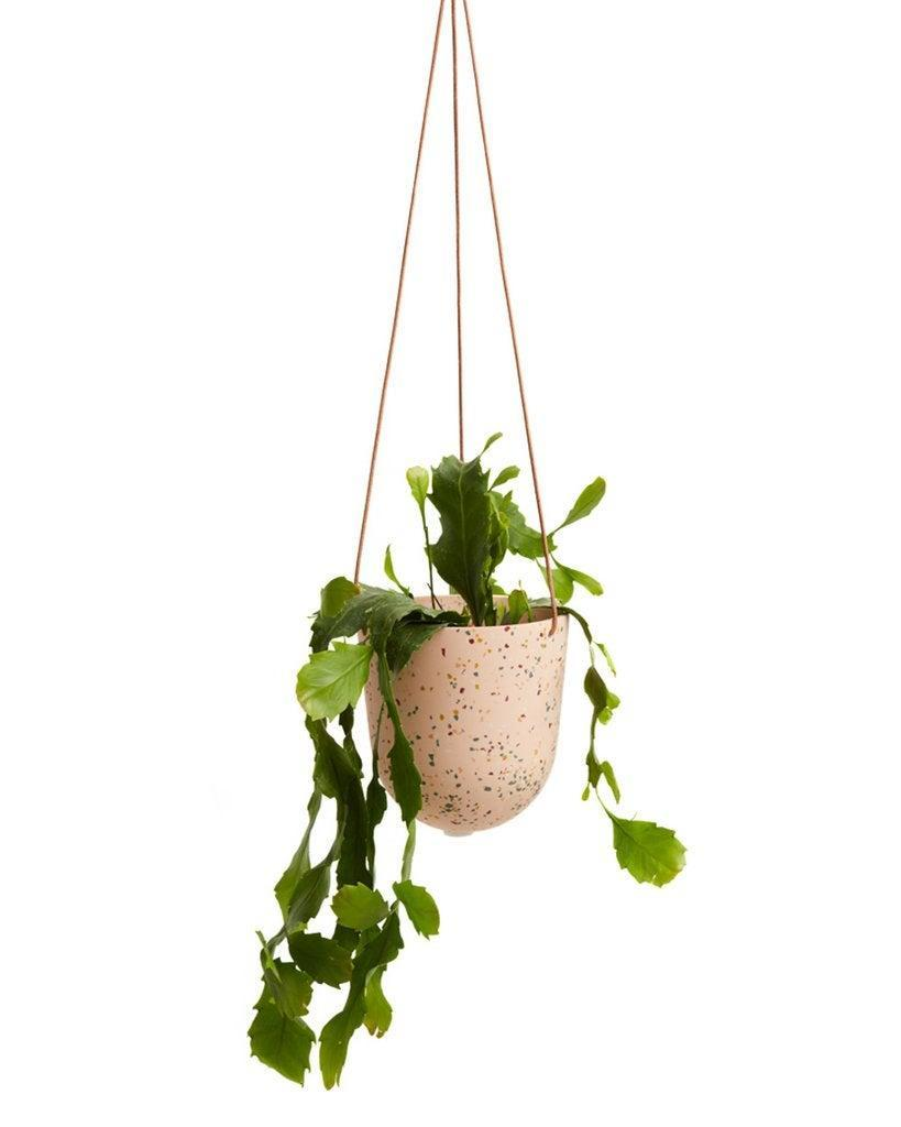 """<h2>Capra Designs Terrazzo Hanging Pot</h2> <br>This pretty planter is artfully crafted from a pale-pink, terrazzo-speckled resin that's suspended by a tan-leather strap. <br><br><strong>Capra Designs</strong> Terrazzo Hanging Pot - Salt, $, available at <a href=""""https://www.bando.com/products/terrazzo-hanging-pot-salt"""" rel=""""nofollow noopener"""" target=""""_blank"""" data-ylk=""""slk:ban.do"""" class=""""link rapid-noclick-resp"""">ban.do</a><br>"""