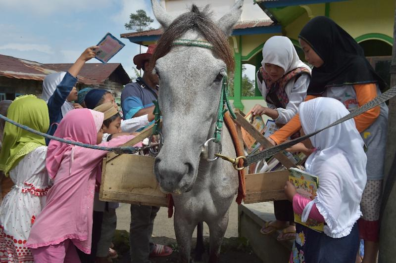 Children sort through books on a shelf hanging from Luna the horse in Serang, Indonesia's main island of Java (AFP Photo/Adek Berry)