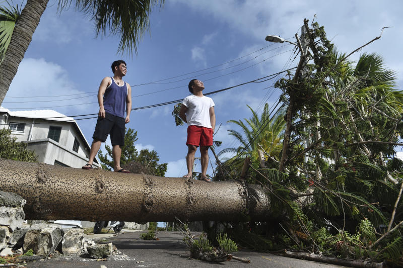 Men stand on a tree felled by Hurricane Humberto, on Pitts Bay Road in Hamilton, Bermuda, Thursday, Sept. 19, 2019. Humberto blew off rooftops, toppled trees and knocked out power but officials said Thursday that the Category 3 storm caused no reported deaths. (AP Photo/Akil J. Simmons)