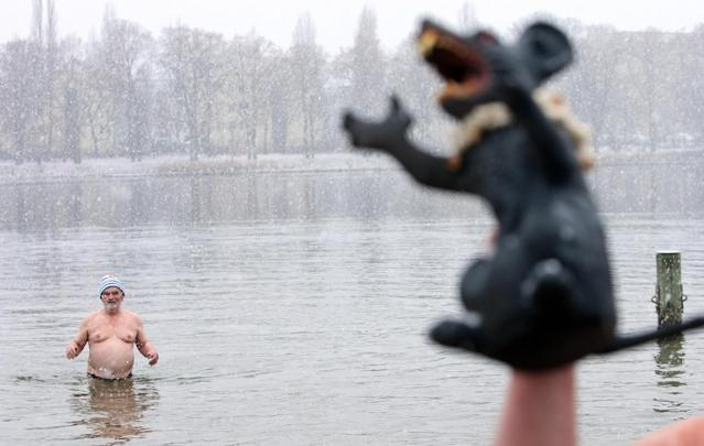 BERLIN, GERMANY - JANUARY 12: An ice swimming enthusiast wades in the cold waters of Orankesee lake as another waves a toy evil rat in the air during the 'Winter Swimming in Berlin' event on January 12, 2013 in Berlin, Germany. A local swimmers' group called the 'Berlin Seals' invite ice swimmers from across Germany and abroad to the annual event, which, despite warmer temperatures this winter and a lack of ice, was still held. Members claim ice swimming is good for the body's blood circulation. (Photo by Adam Berry/Getty Images)