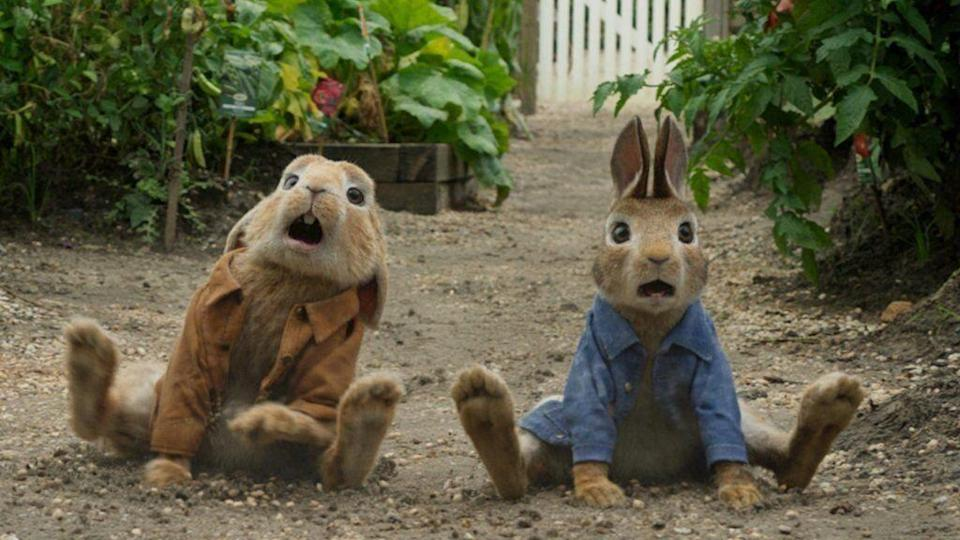 Why did people complain about Peter Rabbit?