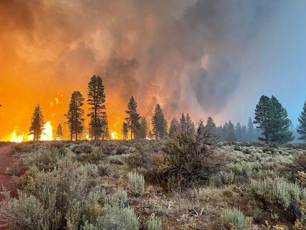 In this handout provided by the USDA Forest Service, the Bootleg Fire burns on July 12 in Bly, Oregon. The Bootleg Fire has spread over 212,377 acres, making it the largest among the dozens of blazes fueled by record temperatures and drought in the western United States. (Photo: Handout via Getty Images)