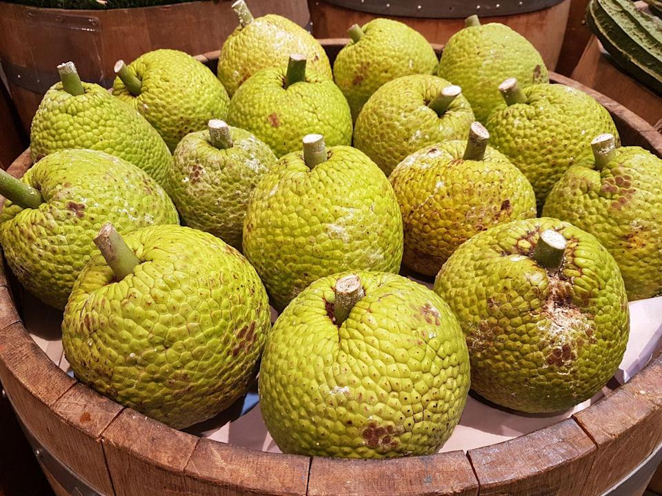 """<p>Another great source of vitamin C, breadfruit also has a fair amount of the minerals <a href=""""https://www.goodhousekeeping.com/health/diet-nutrition/g2065/potassium-superfoods/"""" rel=""""nofollow noopener"""" target=""""_blank"""" data-ylk=""""slk:potassium"""" class=""""link rapid-noclick-resp"""">potassium</a> and magnesium. It's a particularly interesting fruit, because when it's unripe it can be cooked like a <a href=""""https://www.goodhousekeeping.com/food-recipes/g1633/potato-recipes/"""" rel=""""nofollow noopener"""" target=""""_blank"""" data-ylk=""""slk:potato"""" class=""""link rapid-noclick-resp"""">potato</a>, but when it's ripe it can be used in a dessert. Another thing that's unusual about breadfruit: It's a terrific source of <a href=""""https://link.springer.com/article/10.1007/s00726-015-1914-4"""" rel=""""nofollow noopener"""" target=""""_blank"""" data-ylk=""""slk:protein"""" class=""""link rapid-noclick-resp"""">protein</a>.</p>"""