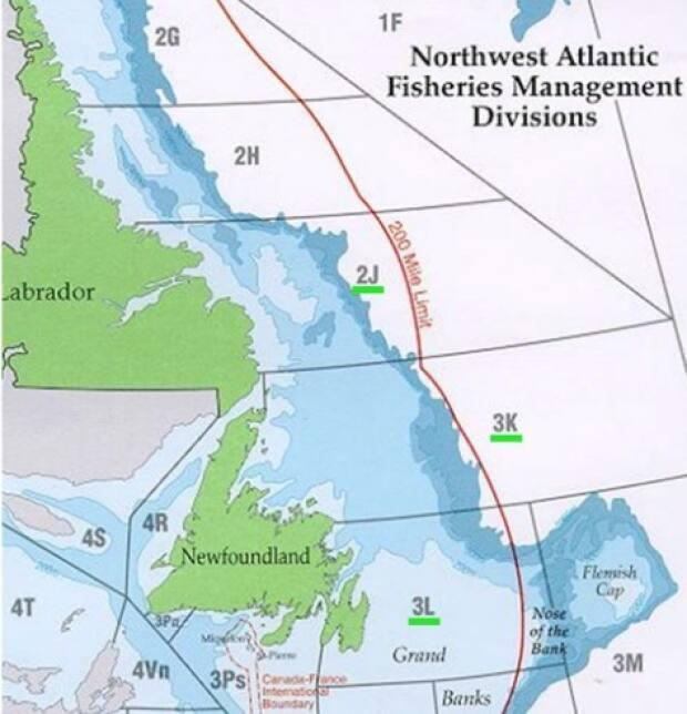 The northern cod stocks are found primarily in 2J3KL.
