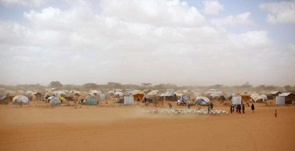 """FILE - In this Aug. 7, 2011 file photo, Somali refugees herd their goats at the Ifo refugee camp outside Dadaab, eastern Kenya, 100 kilometers (62 miles) from the Somali border. Climate change could push more than 200 million people to move within their own countries in the next three decades and create migration hotspots unless urgent action is taken in the coming years to reduce global emissions and bridge the development gap, a World Bank report has found. The report published on Monday, Sept. 13, 2021 examines how long-term impacts of climate change such as water scarcity, decreasing crop productivity and rising sea levels could lead to millions of what the report describes as """"climate migrants"""" by 2050. (AP Photo/Jerome Delay, File)"""