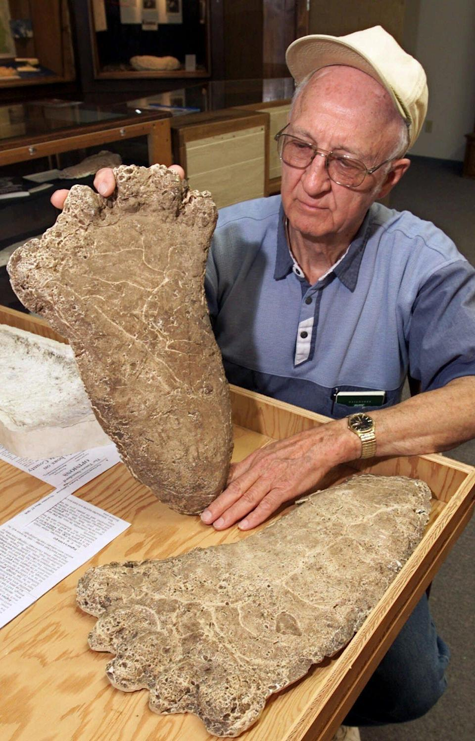 """FILE - In this Monday, June 5, 2000 file photo Al Hodgson, a volunteer guide at the Willow Creek-China Flat Musuem, holds up a plaster cast of a Bigfoot imprint displayed at the museum's new """"Bigfoot Wing"""" in Willow Creek, Calif. European researchers are planning to use new techniques to analyze DNA that could help crack the mystery of whether Bigfoot exists. In a project announced this week, May 2012, Oxford University and Lausanne Museum of Zoology scientists appealed to museums, scientists and yeti aficionados to share samples thought to be from the mythical ape-like creature. Researchers plan to focus on hair samples to determine the species it originated from. New genetic tests will be done on just a few strands, and completed within weeks. (AP Photo/Rich Pedroncelli, file)"""