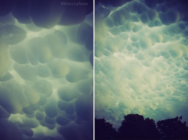Yesterday we were witness of a meteorological fenomeno that we didn't know that existed, before the storm we could see some mammatus clouds over our city, amazing! This photo was taken on November 9, 2011 in Marcos Juárez, Cordoba, AR.