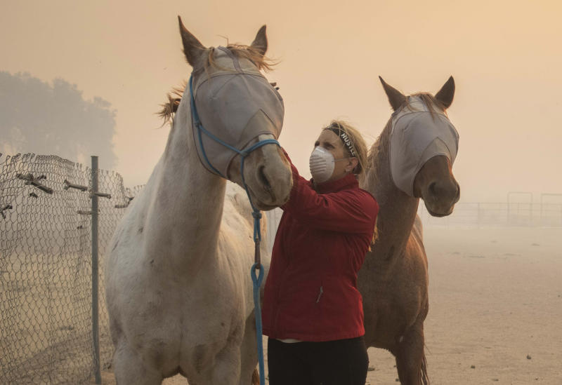 Volunteers help evacuate horses during the Easy Fire, Wednesday, Oct. 30, 2019, in Simi Valley, Calif. (Photo: Christian Monterrosa/AP)