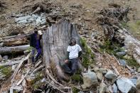 Two activists stand next to the stump of a large tree in a cut block of Tree Farm licence 46 near Port Renfrew