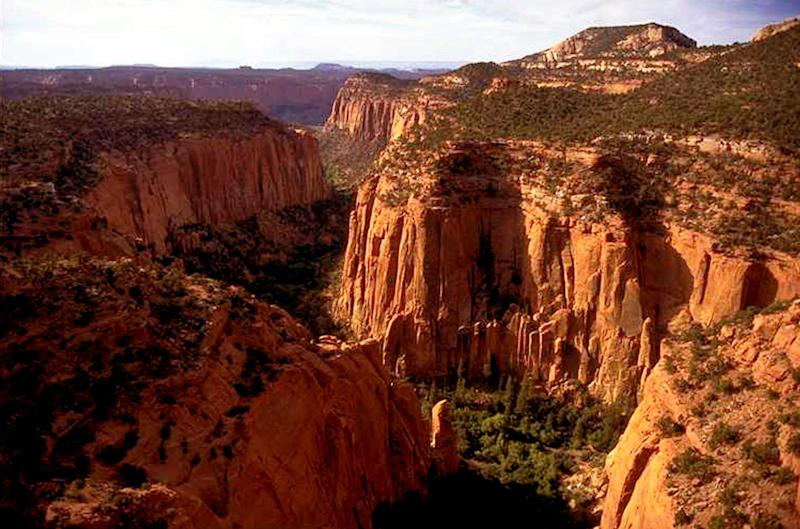 FILE - In this undated file photo, the Upper Gulch section of the Escalante Canyons within Utah's Grand Staircase-Escalante National Monument features sheer sandstone walls, broken occasionally by tributary canyons. Utah has long stood out for going far beyond other Western states in trying to get back control of its federally protected lands. When President Donald Trump on Monday, Dec. 4, 2017, announces he's going to shrink two national monuments in the state, his warm welcome will stand out in a region that is normally protective of its parks and monuments. (AP Photo/Douglas C. Pizac, File)