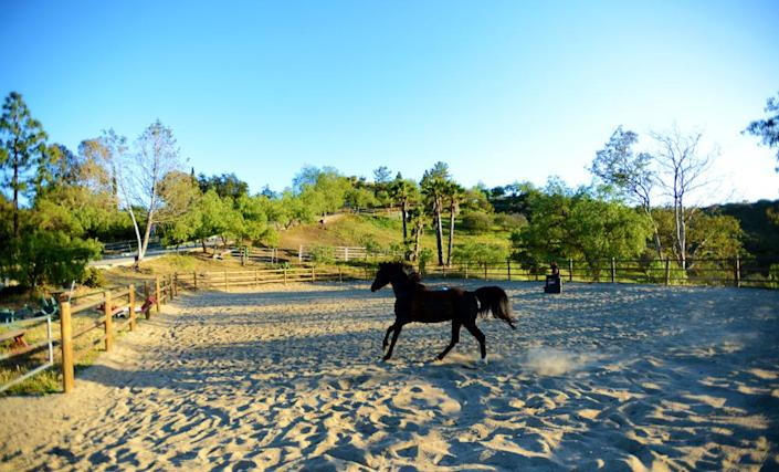 <p>The very open but very private property–about 4 million square feet of land in all—is across Encinal Canyon from the Malibu Country Club.</p><p><i>(Photo: Total Agent)</i><br></p>