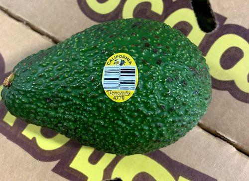 One of the avocado type subject to a voluntary recall from Henry Avocado.