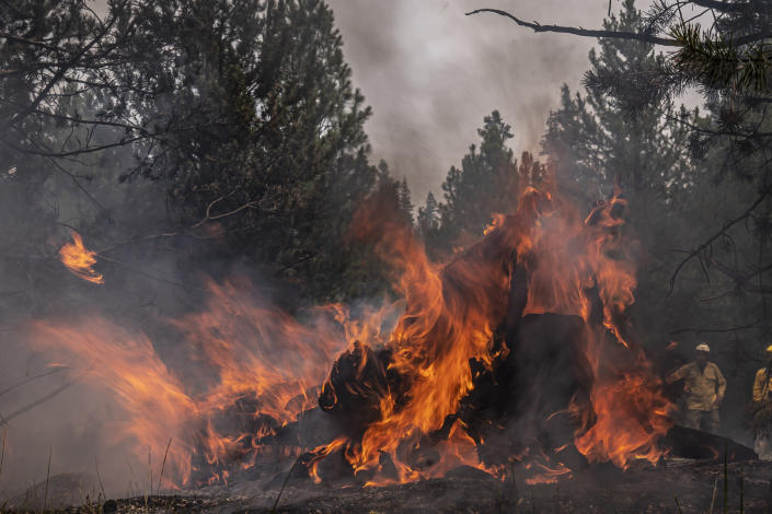 Firefighters watch as a log burns near a containment line on the Northwest edge of the Bootleg Fire on Friday, July 23, 2021, near Paisley, Ore. (AP Photo/Nathan Howard)