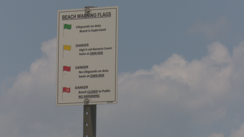 Eight out of nine beaches tested in Windsor-Essex cleared for swimming