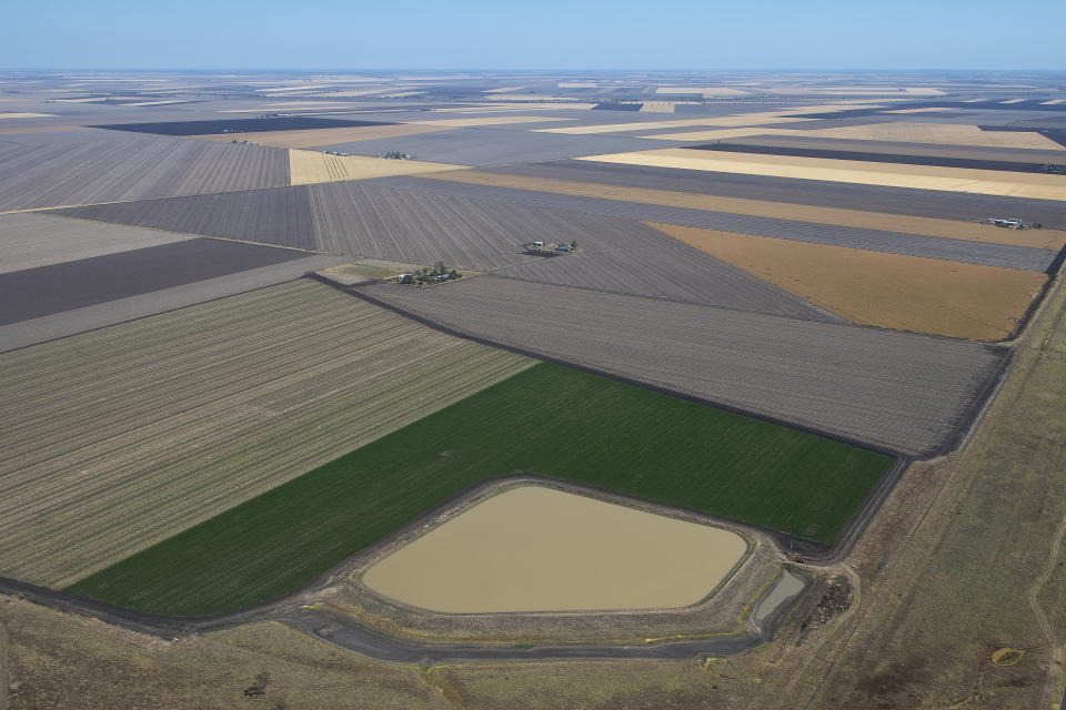 Agricultural crops, including barley, are seen on the Darling Downs, west of Brisbane.