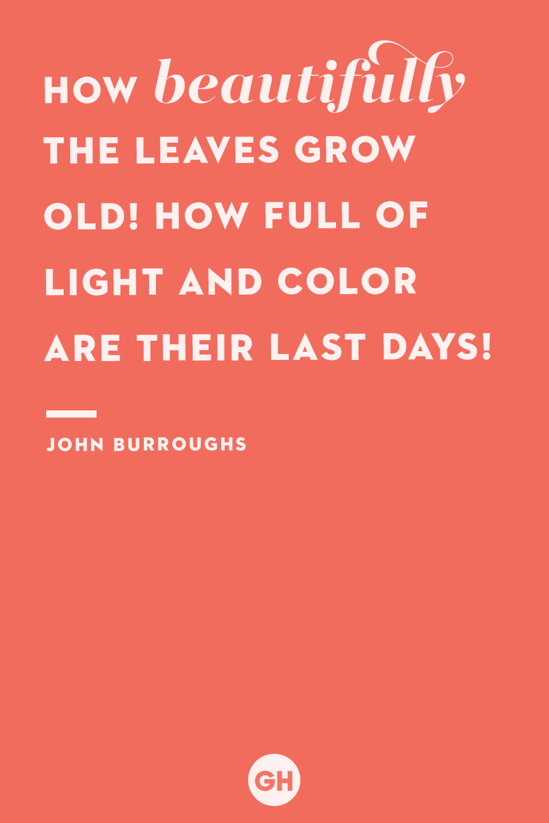 <p>How beautifully the leaves grow old! How full of light and color are their last days!</p>