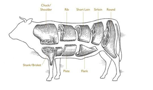 Beef Cut Anatomy You Know Your Beef Cuts
