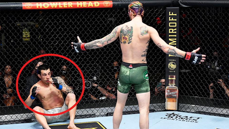 Sean O'Malley (pictured right) gesturing after knocking down Thomas Almeida (pictured left).
