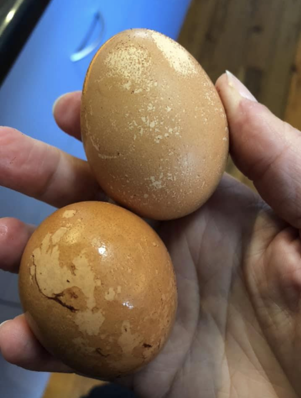 Coles eggs shown with dark discolouration that was later rinsed off with water.