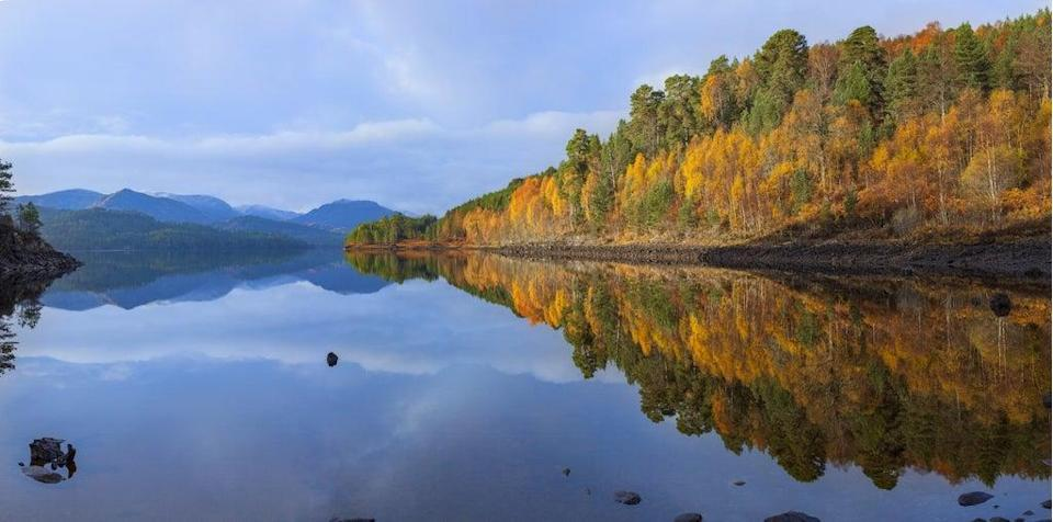 The project would cover Glen Affric (Grant Willoughby/Trees for Life/PA)