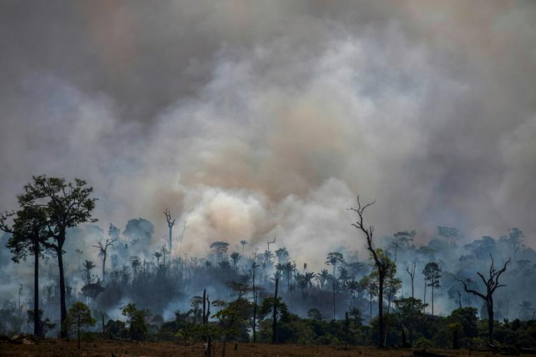 Smokes rises from forest fires in Altamira, in Brazilian the Amazon basin state of Para, in late August 2019 (AFP Photo/Joao Laet)