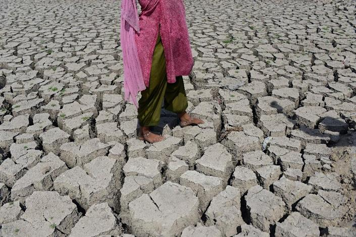 The global average temperature last year was 1.69 Fahrenheit (0.94 Celsius) above the 20th century average (AFP Photo/Sam Panthaky)