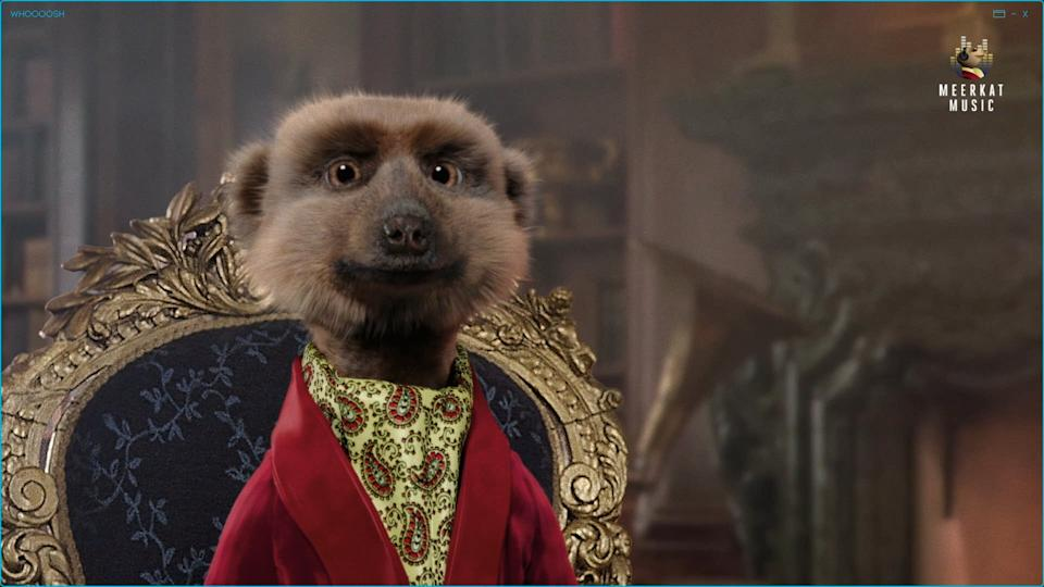 ComparetheMarket's character Sergei the Meerkat in its popular ad. Photo: Meerkat Music via Getty Images