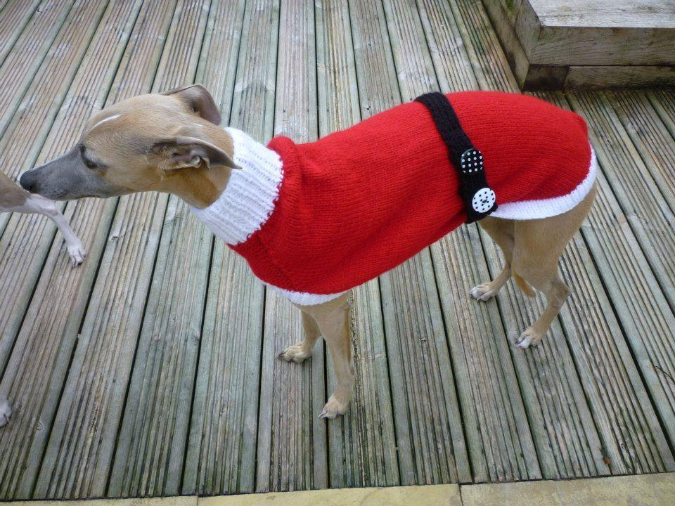 """<p>She started knitting for a small greyhound rescue center in 2008 and has now hand-knitted more than 300 sweaters for abandoned dogs. Each sweater can take her up to 20 hours to complete.<i>(Photo: Jan Brown via <a href=""""https://www.facebook.com/KnittedDogClothes/photos_stream"""">Facebook</a>)</i><br /></p>"""